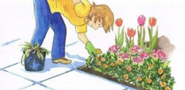 Gartenkalender für die Woche 47