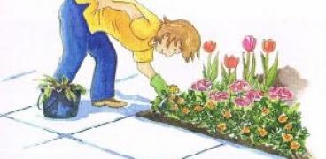 Gartenkalender für die Woche 07