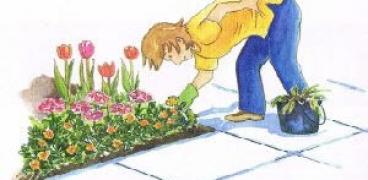 Gartenkalender für die Woche 08